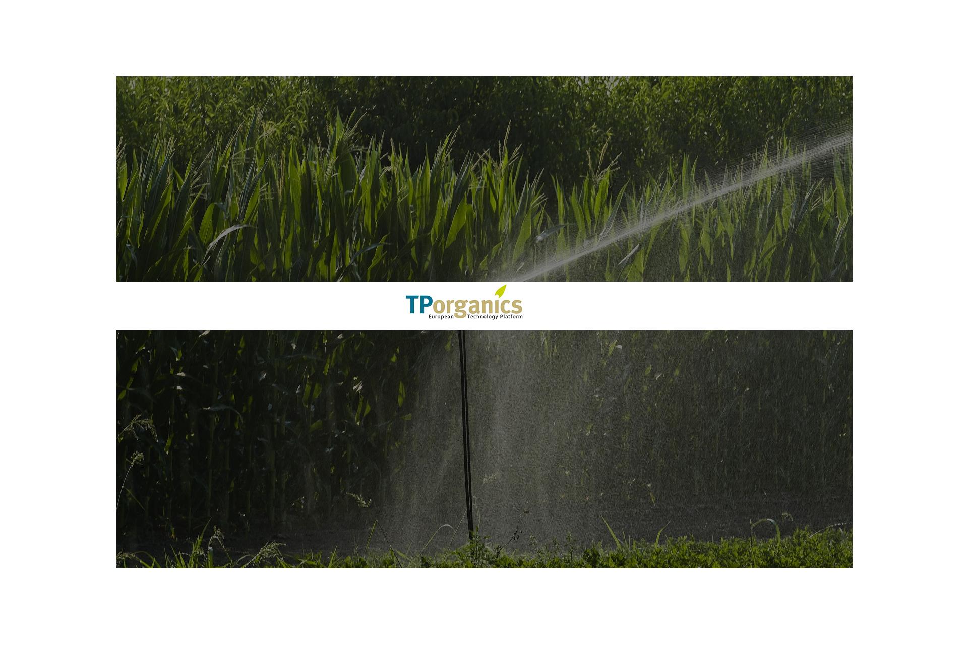tp_header